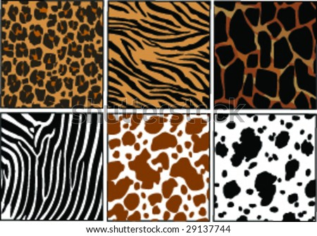 Vector Illustration of different animals skins - stock vector