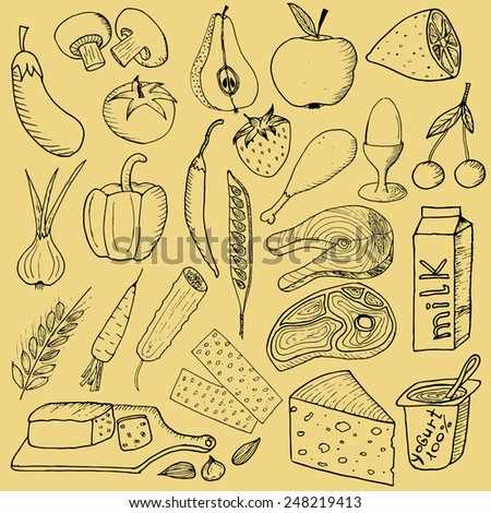 Vector illustration of doodle healthy food