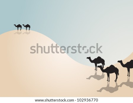 Vector illustration of dromedary silhouette - stock vector