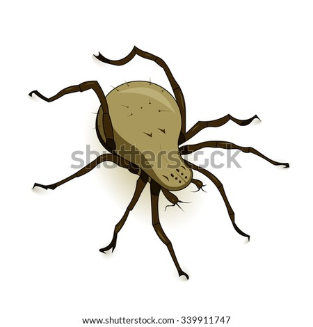 Vector illustration of dust mite parasite isolated on white background