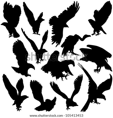 Vector illustration of Eagles silhouettes