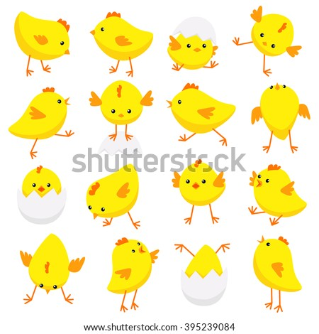 Vector illustration of Eastern chicks in various poses isolated on white background  - stock vector