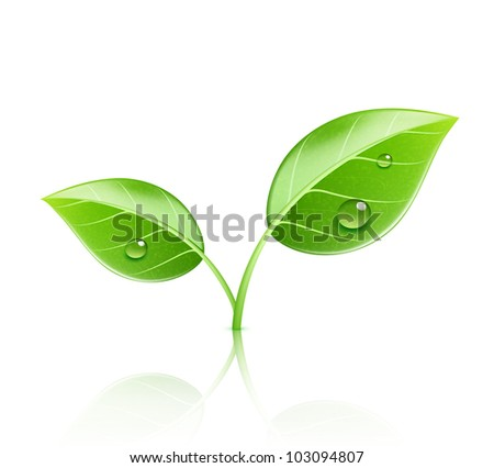 Vector illustration of ecology concept icon with glossy green leaves