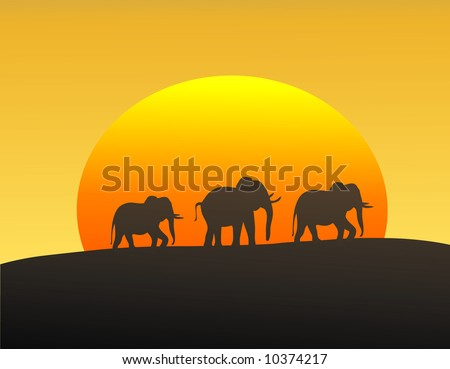 Vector illustration of elephants silhouetted against the setting sun