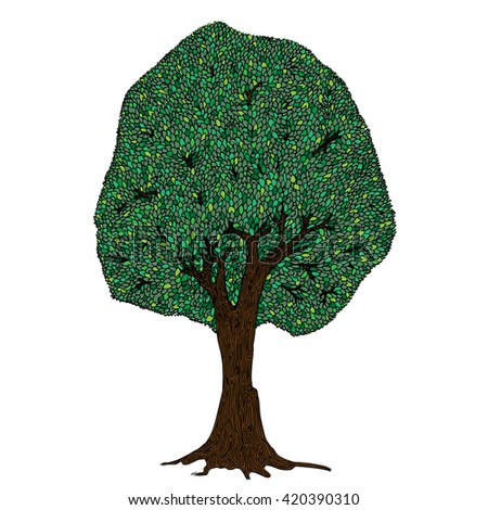 Beech Tree Tattoo