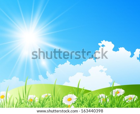 Vector illustration of field of daisies with bright sun - stock vector