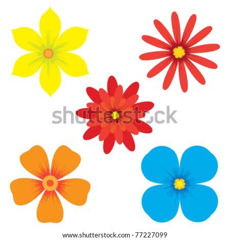 Vector illustration of flowers - stock vector