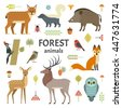 vector illustration of forest...