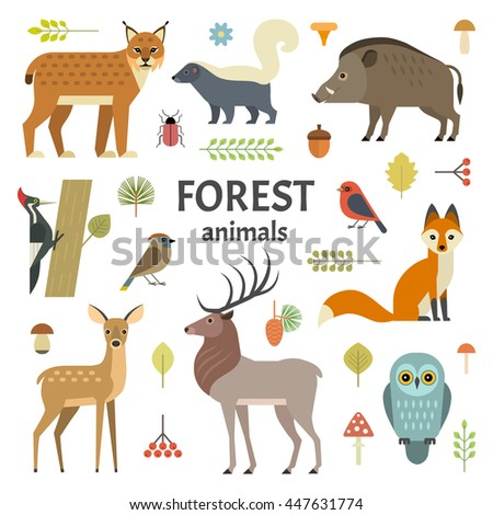 Vector illustration of forest animals: elk, doe, hedgehog, fox, owl, lynx, skunk, wild boar, woodpeckers and other birds, isolated on transparent background. - stock vector
