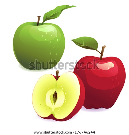 Vector Illustration of Green and red apples with leaves - stock vector