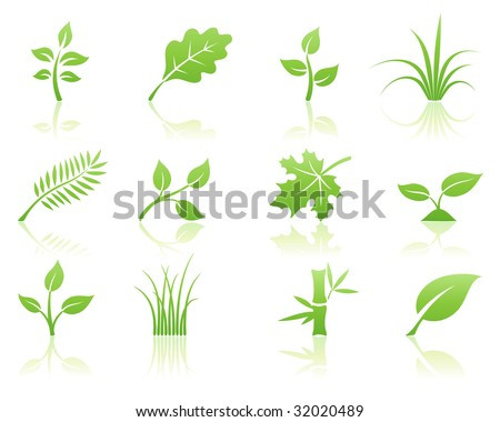 Vector illustration of green ecology nature floral icon set with reflections - stock vector