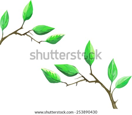 Vector illustration of green tree leaves. Young plant. cherry tree green leaves isolated on white background - stock vector