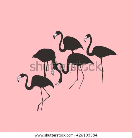 Vector illustration of hand drawn graceful flamingos made in silhouettes.