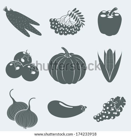 Vector illustration of icons of fruits and berries