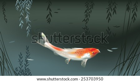 Vector illustration of koi carp in evening pond - stock vector