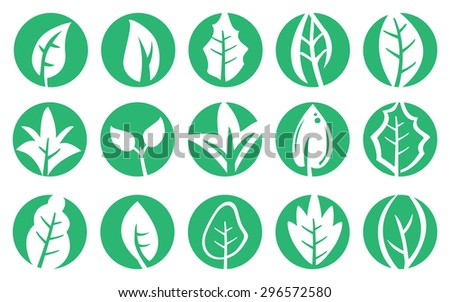 Vector illustration of leaf in various shapes in green circle. Design set for symbols and logos on natural concept isolated on white background. - stock vector