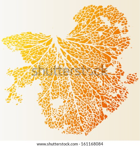 Vector illustration of leaf veins, leaf skeleton. Abstract yellow orange background / isolated leaf image. Autumn.