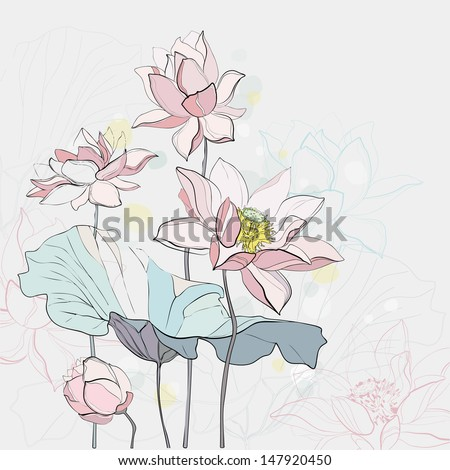 vector illustration of lotus flowers - stock vector