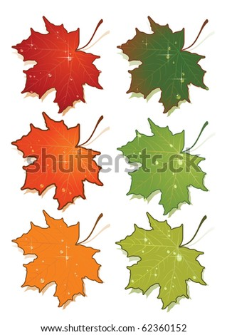 Vector illustration of maple's leafs set. - stock vector