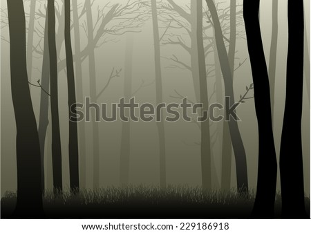 Vector illustration of misty woods  - stock vector