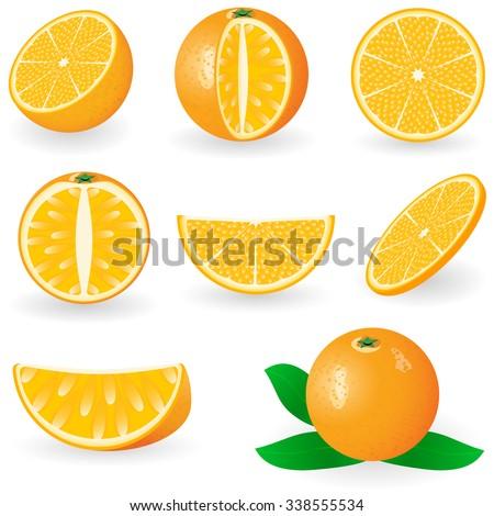 Vector illustration of orange fruit - stock vector