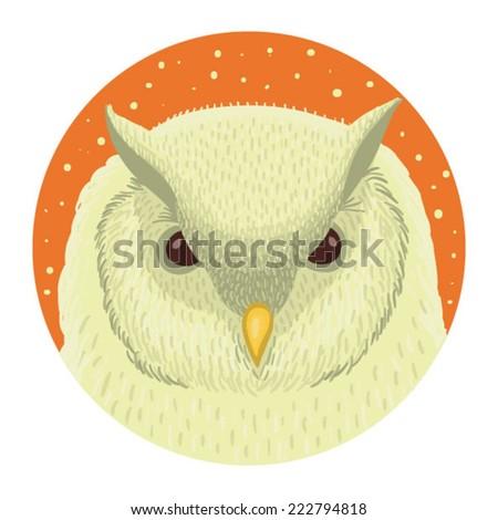 Vector illustration of owl - stock vector