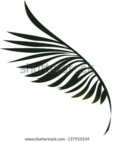 Vector illustration of palm leaves - stock vector