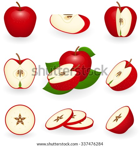 Vector illustration of red apple - stock vector