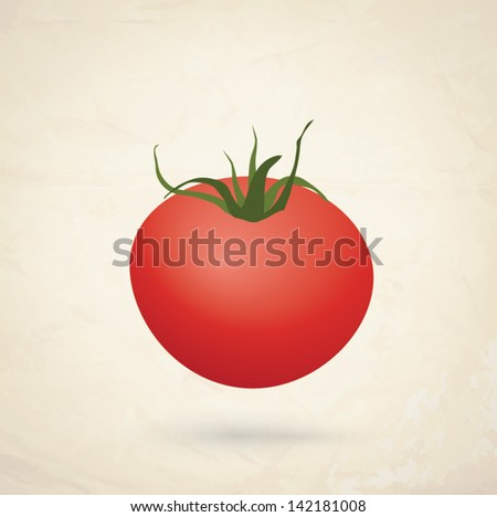 Vector illustration of red fresh tomato - stock vector