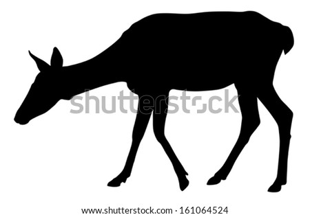 Vector illustration of roe silhouette - stock vector