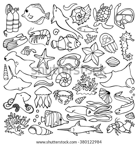 Vector illustration of  sea and ocean hand drawn elements - stock vector