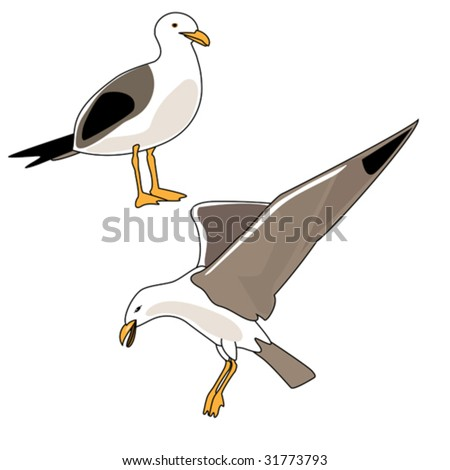 Vector illustration of seagulls flying and standing. - stock vector