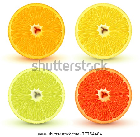 Vector illustration of Slices of citrus fruits: orange, red grapefruit, lemon and lime. Great for making patterns - stock vector