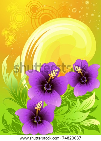 Vector illustration of summer composition with hibiscus, orange sun backgrounds