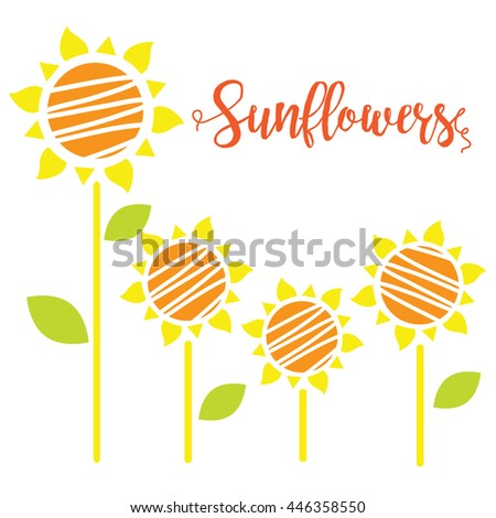 Vector illustration of sunflowers. Sunflowers Isolated on white background.