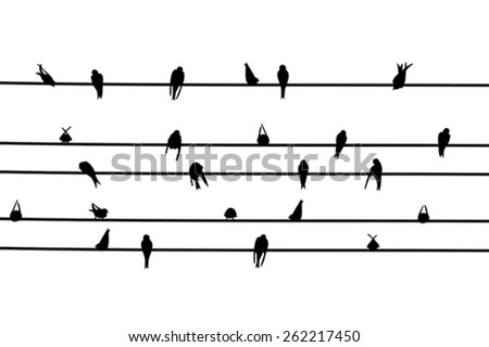 Vector illustration of swallow alighted on electric wires - stock vector