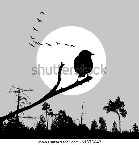 vector  illustration of the bird on branch - stock vector