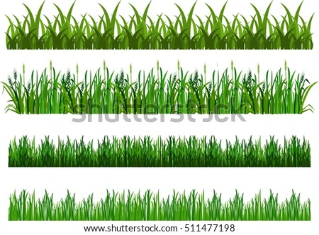 vector illustration of the composition of the grass isolated on white background