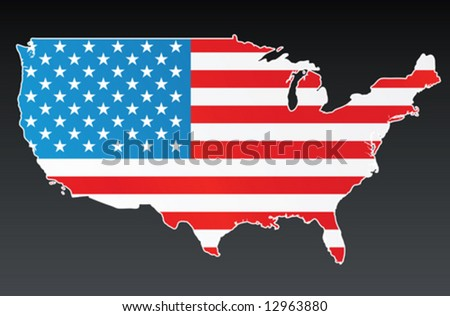 Vector illustration of the US country with the USA flag over it. White border and background on separate layer.