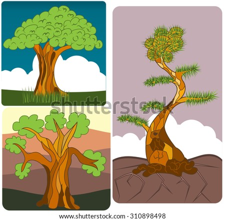 vector illustration of three different trees along with their background. - stock vector