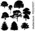 Vector illustration of tree silhouettes - stock photo