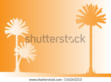 Vector illustration of tropical beach sunset .