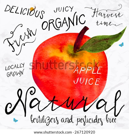 Vector illustration of watercolor red apple, hand drawn in 1950s or 1960s style. Concept for farmers market, organic food, natural product design, soap package, herbal tea, etc. - stock vector