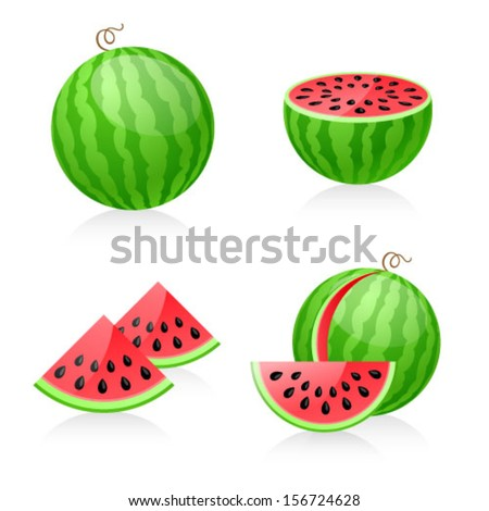Vector illustration of watermelon - stock vector