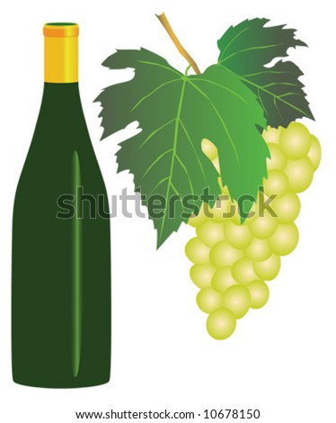 Vector illustration of white grapes and a bottle of white wine - stock vector