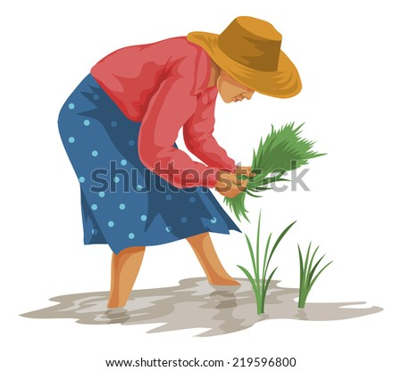 Vector illustration of woman plucking vegetables in farm. - stock vector