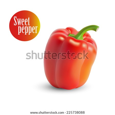 Vector illustration of yellow sweet peppers . - stock vector