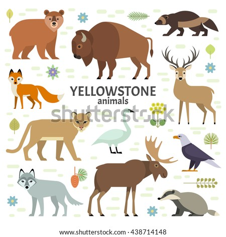 Vector illustration of Yellowstone National Park animals: moose, elk, bear, wolf, fox, bison, badger, wolverine, mountain lion, bald eagle, swan, isolated on transparent background. - stock vector