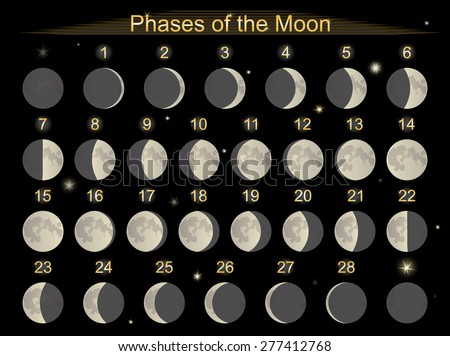 Vector illustration set icons  phases of the Moon. - stock vector