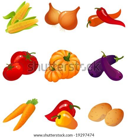 Vector illustration - set of vegetables - stock vector
